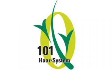 101 Haar-System