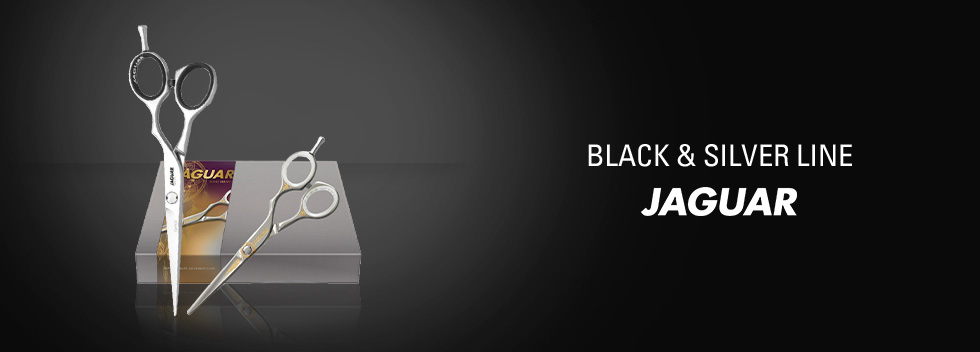 Jaguar Silver & Black Line