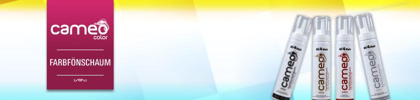 Cameo Farbfönschaum
