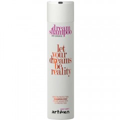 Artego Easy Care Dream Repair Aufbau-Shampoo 250 ml