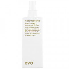 evo Mister Fantastic Blowout Spray 200 ml