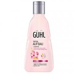 Guhl Tiefenaufbau Shampoo 250 ml