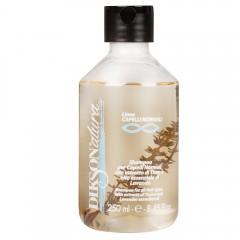 Dikson Diksonatura Shampoo für normales Haar 250 ml