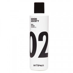 Artego Rich Color 02 Shampoo 250 ml