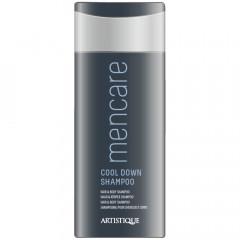 Artistique Youcare Men Cool Down Shampoo 1000 ml