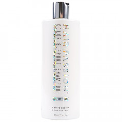 Hair Passion Color Support Shampoo 500 ml