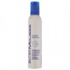 HAIR HAUS Super Brillant Color Mousse silber 250 ml