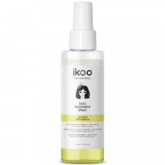 ikoo infusions Duo Treatment Spray Anti Frizz 100 ml
